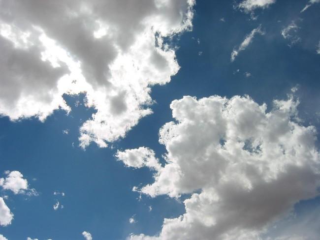 В Тверской области на этой неделе будет облачно