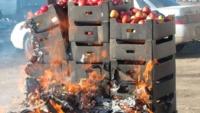 В Твери уничтожили 120 кг санкционных груш