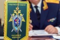 В Калининском районе судят растлителя малолетней племянницы