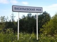 Васильевский Мох: в круге ада