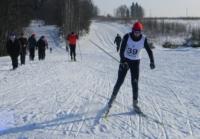 В лыжных гонках областного УМВД победили наркополицейские
