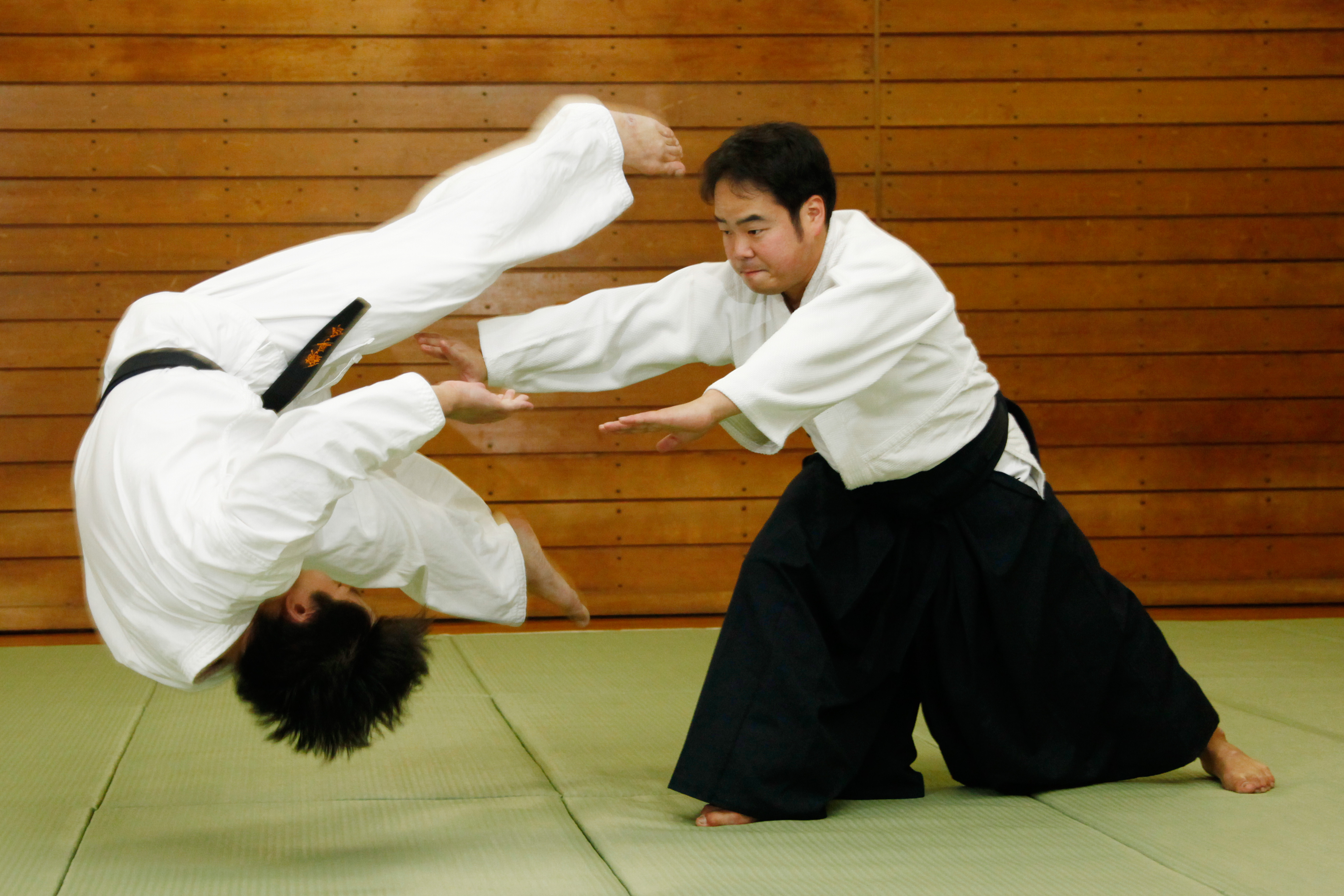 an overview of the japanese martial arts aikido Aikido is a non-competitive japanese martial art which was developed early in the 20th century by morihei ueshiba (1883-1969) (the way of martial arts).