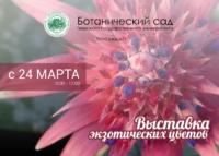 Тропические растения можно будет увидеть в Ботаническом саду