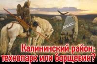 Калининский район: технопарк или борщевик?