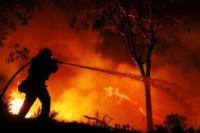 В Тверской области определили лучшего лесного пожарного